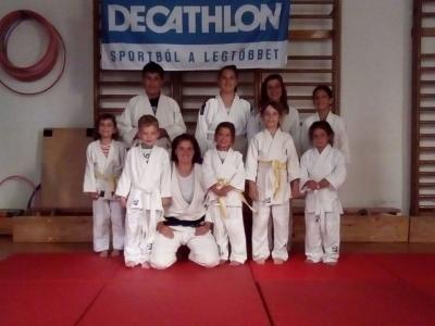 Sakura Judo és Küzdősport Alapítvány