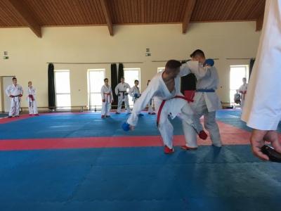 Honvéd-Takara Karate Sportegyesület