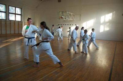 Kowax Karate SE