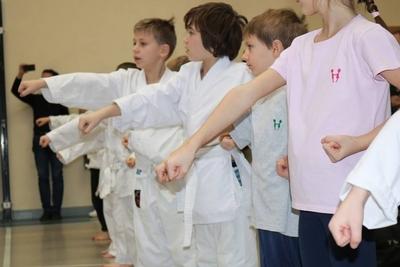 Vasas Karate