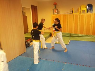 Veresi Karate SE