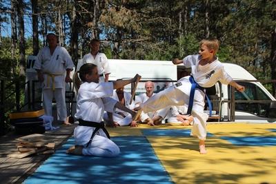 Reiniku Kyokushin Karate Klub