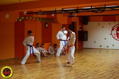 Shotokan Tigrisek SE