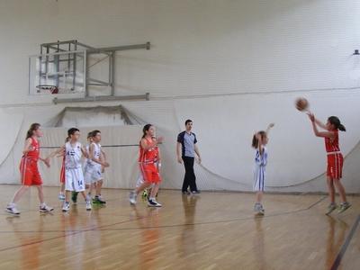 Nagykőrösi Sólymok Kosárlabda Egyesület
