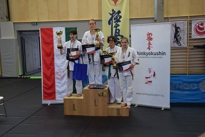 Ippon Kyokushin Karate SE