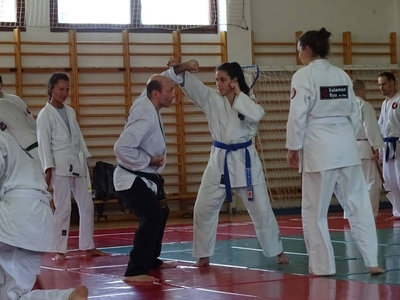 Főnix Ju Jitsu Dojo