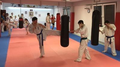 DTKK SE Kyokushin Karate