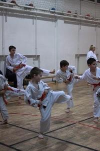 Josui Karate
