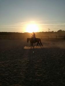 Texas Ranch Sport Egyesület