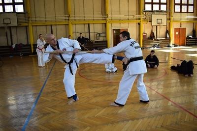 Taekwondo Sentinel SE