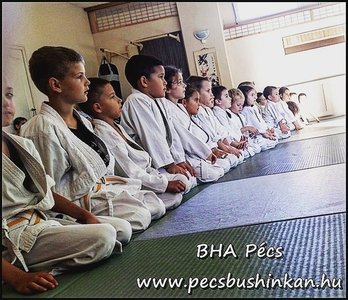 Bushinkan Harcművészeti Akadémia